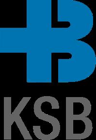 Passgenaue Formular-Lösung für das KSB – Informer